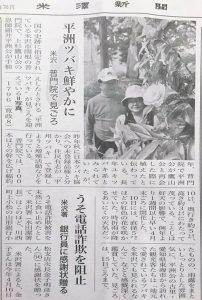 2018年5月吉日米沢新聞 「平洲ツバキ鮮やかに」